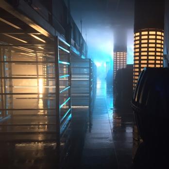 Alien Space Prison
